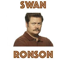 Ron Swanson. by am97