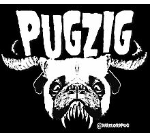 pugzig Photographic Print