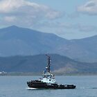 Tug Boat leaving Port to collect Carrier Ship, Townsville, Nth. Queensland. by Rita Blom