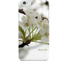 White on White ~ in Morning Rain iPhone Case/Skin