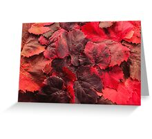 Red Grape Vines Greeting Card