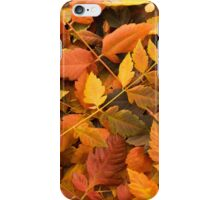 Yellow & Red Autumn Leaves iPhone Case/Skin