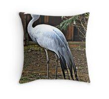 """BIRDS""/Waterfowl Throw Pillow"