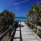 view from the boardwalk by kathy s gillentine