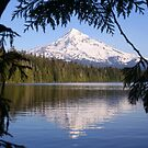 Mt Hood Reflecting in Lost Lake by Randy Richards