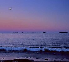 Roque Bluff State Park ~ Moonrise by Alana Ranney