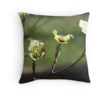 Early Dogwood Throw Pillow