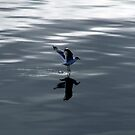 walking on water by lukasdf