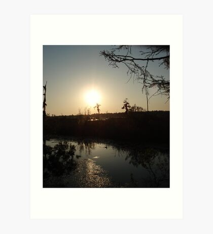 Sunset with Coot, March, 2009 Art Print