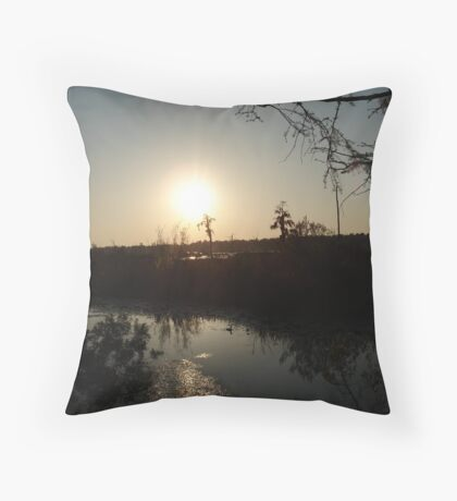Sunset with Coot, March, 2009 Throw Pillow