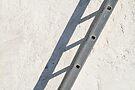 Shadow Ladder by Walter Quirtmair