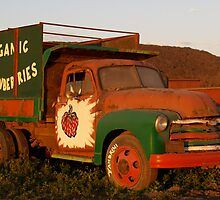 Truck by Sally P  Moore