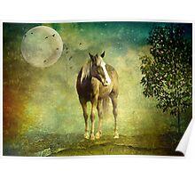Midnight Runner Poster