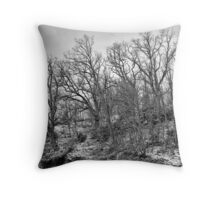 Bare trees 2 Throw Pillow