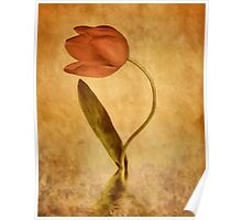 The Tulip Poster