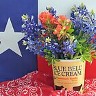 Texas Favorites by EmmaLeigh