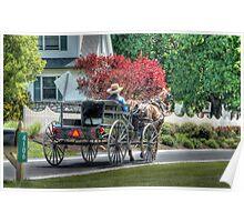 Amish Man and Wagon Poster