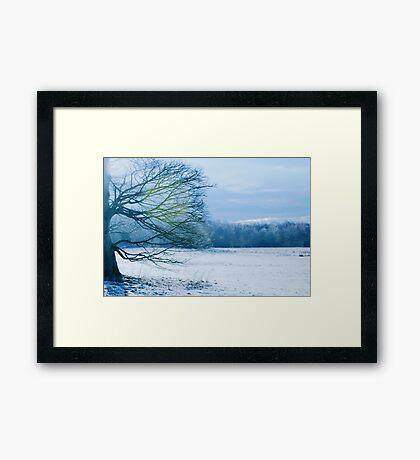 A Winter Scene Framed Print