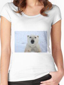 Close Encounter - Polar Bear Portrait Women's Fitted Scoop T-Shirt
