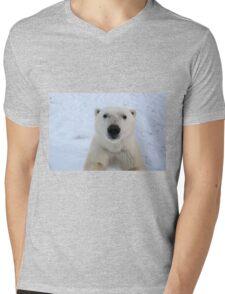 Close Encounter - Polar Bear Portrait Mens V-Neck T-Shirt