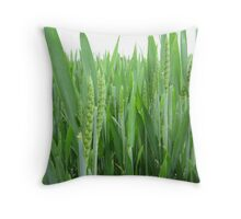 Young Grain Throw Pillow