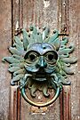 The Sanctuary Knocker, Durham Cathedral by Christine Smith