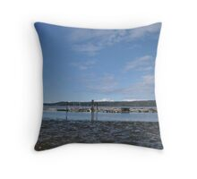 Fanny Bay Landscape 3 Throw Pillow