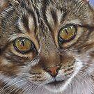 Eyes of Billy by artbyakiko