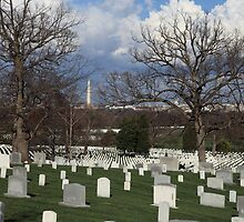 Arlington National Cemetary by Judson Joyce