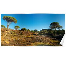 Winter panorama in Provence Poster