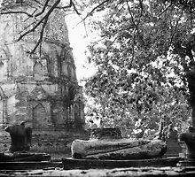 Ayutthaya ruins by Kyra  Webb
