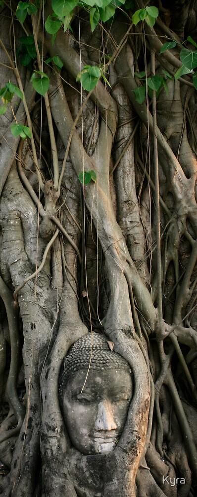 Buddha tree by Kyra  Webb