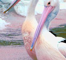 Pelican 5.1 Sticker