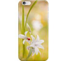Ornithogalum nutans flower and ladybug iPhone Case/Skin