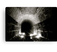 The Relationship Between Light And Dark Canvas Print