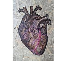 Anatomical heart illustration, original painting, old dictionary pages Photographic Print