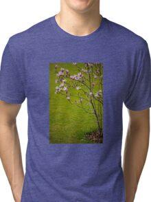 Vibrant pink Magnolia blossoms  Tri-blend T-Shirt