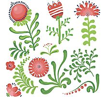 Set of symmetrical floral graphic design elements Photographic Print