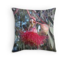 Silver Princess in full glory Throw Pillow