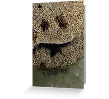 Happy Coral Greeting Card