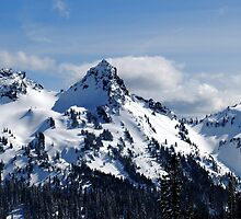 The Tatoosh Mountains by Tori Snow