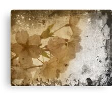 Antique Blossoms Canvas Print