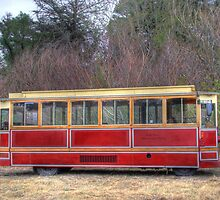 Red Bus by Lois Romer