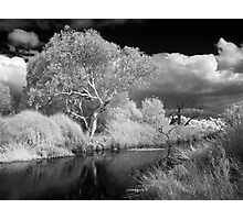 Barrabool River 2 Photographic Print