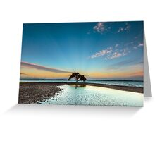 Dusky Mangrove, VictoriaPoint Qld Australia Greeting Card
