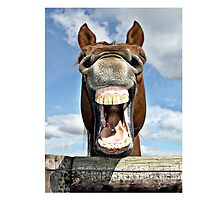 Start the day with a Good Laugh! by Susan Freeman