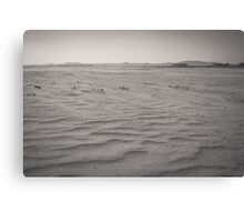 Sands of Eden Estuary Canvas Print