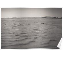 Sands of Eden Estuary Poster