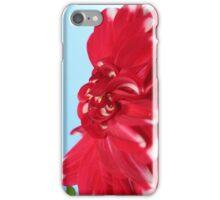 Red Flower - Cold Winter Warmth iPhone Case/Skin