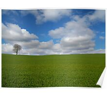Tree in cloud filed sky. Poster